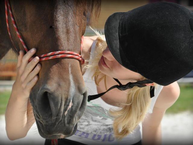 Cavalier et cheval